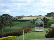 golf1a.jpg